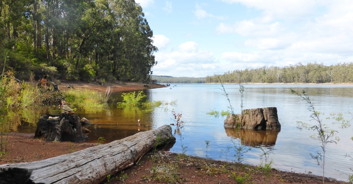Become Outdoorsy: 9 Great Things to Do In Collie & Surrounds